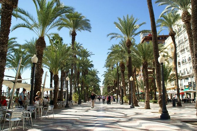 Alicante and Elche Highlights Day Tour from Benidorm photo 4