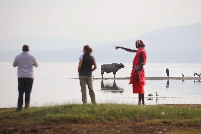 2-Day Flamingo & Rhino Safari at Lake Nakuru