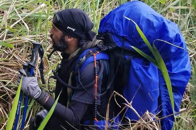 Jungle Trekk in Puerto Rico