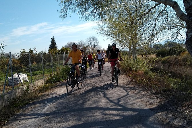 Orchards of Murcia bike and tapas-drink tour photo 6