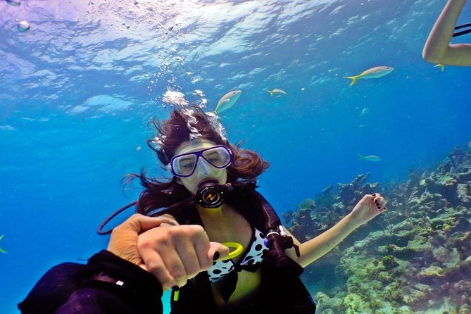 Hurghada: 6-Hour Dive Trip with Two Dive Sites