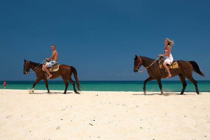 Cozumel Beach Horseback Riding Tour
