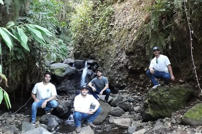 Jardín Coffee Lovers Private Tour with Waterfall Option from Medellín photo 14