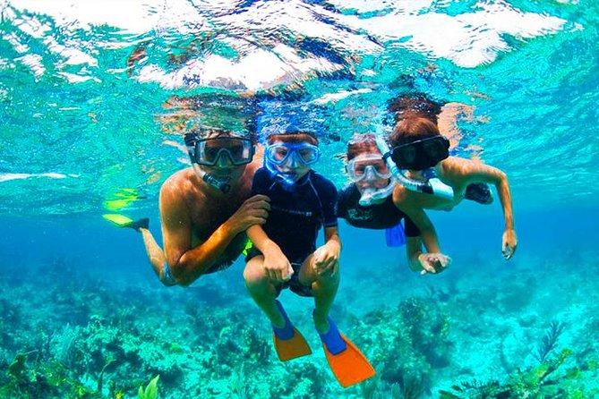 West Bay Aquarium Snorkeling, Beach, Zipline, City Tour & Transfer