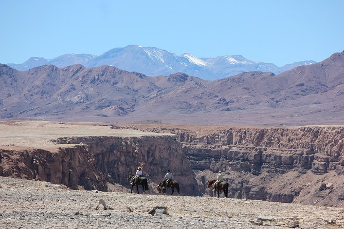 Wild Atacama Horseback riding - Expedition