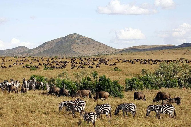 3 Days Maasai Mara Luxury Camping