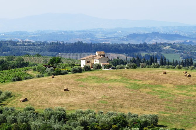 The Mythic Vespa Tour of Florence Hills and Chianti Countryside photo 3