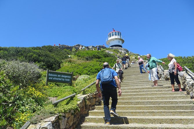 Private Cape Point half day tour