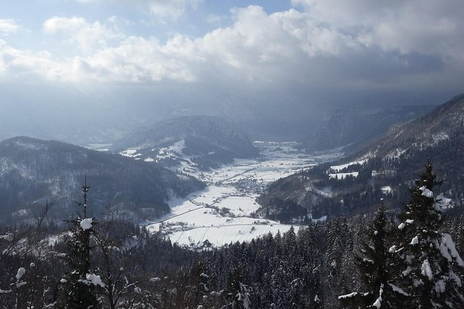 Winter Fairytale - Triglav National Park Half Day Trip