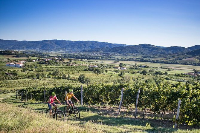 Secret vineyards E-bike tour