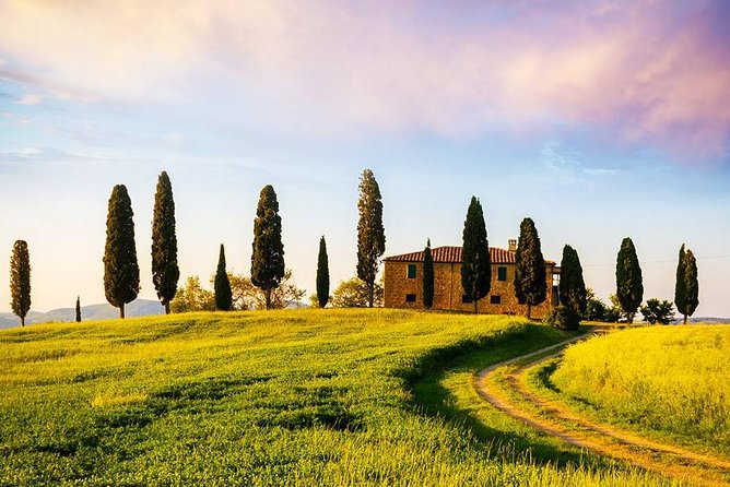 Aroma Cooking Class Experience in Chianti with Lunch at Wine Farm-Ultimate Aroma