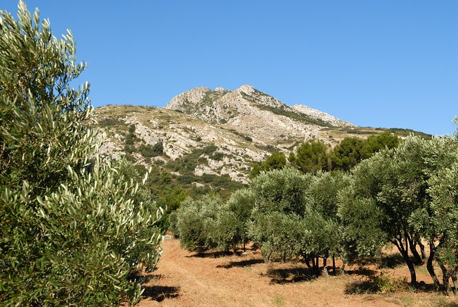 Arles Private Half-Day Tour from Marseille or Aix en Provence