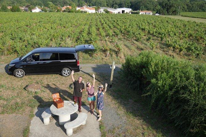 From Nantes - Vineyard of Nantes in Minivan - Half day