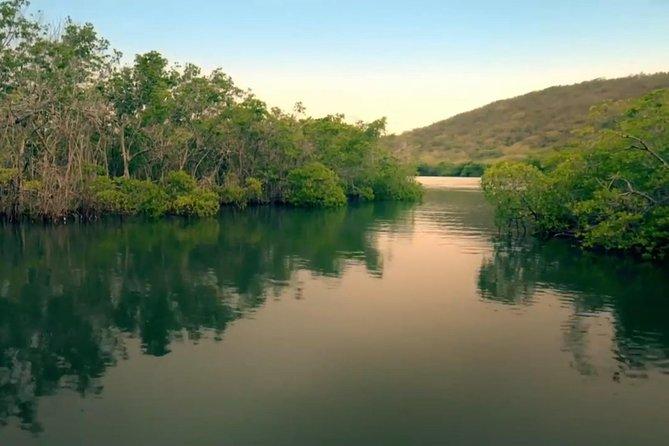 Tour in barca con nuotata a La Parguera Bio Bay da San Juan
