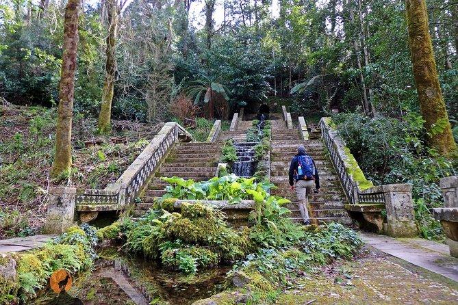 An adventure through the Bussaco National Forest - Coimbra