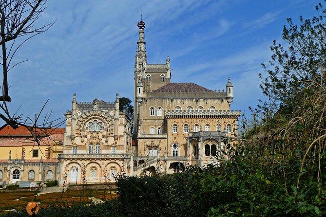 An adventure through the Vila do Luso and Mata do Bussaco- Coimbra