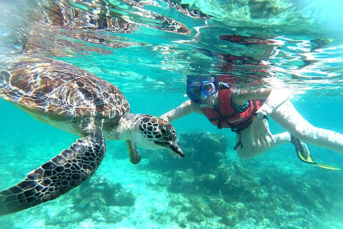 Tulum Ruins and Snorkeling Tour From Cancun & Riviera Maya