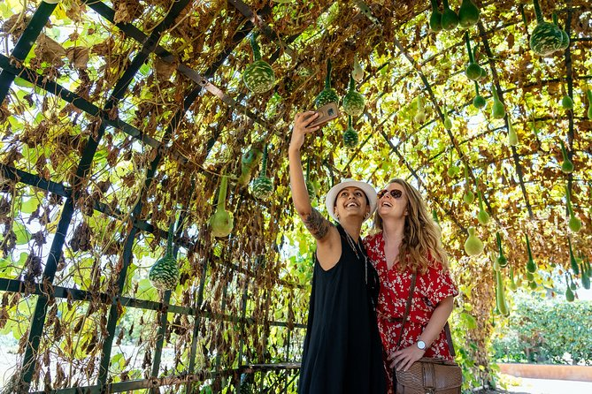 Cape Town Wine Lands Private Day Tour