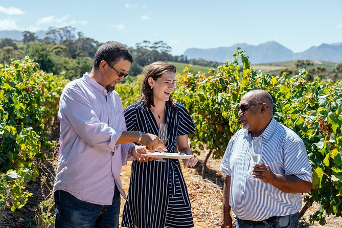 Lonely Planet Experience: For the Love of Wine Half Day Tour from Cape Town