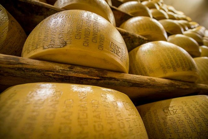 Parmigiano Reggiano cheese factory Tour and Tasting for small groups