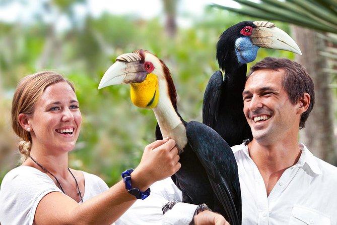 Bali Bird Park Entrance Tickets