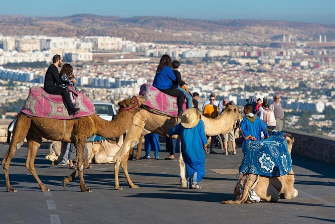 Agadir wonderful parts Discovery & Camel Riding