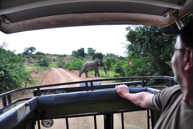 3 Day Safari Experience(Murchison Falls National Park) photo 8