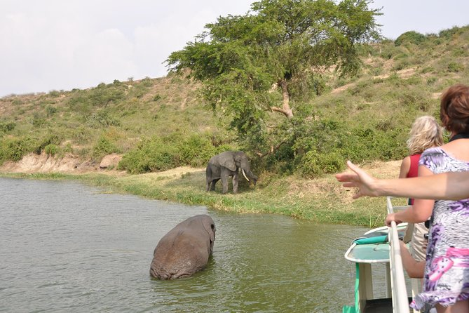 3 Day Safari Experience(Murchison Falls National Park) photo 3
