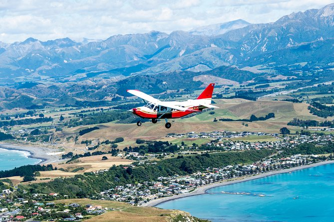 Air Whale Watching in Kaikoura