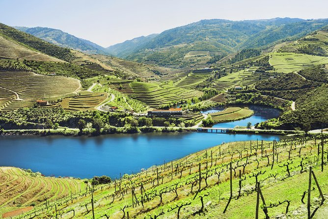 Authentic Douro Wine Tour Including Lunch and Optional River Cruise