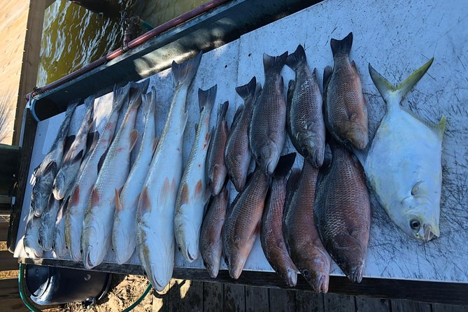 4-Hour Private In-Shore Fishing Charter from Orange Beach photo 15