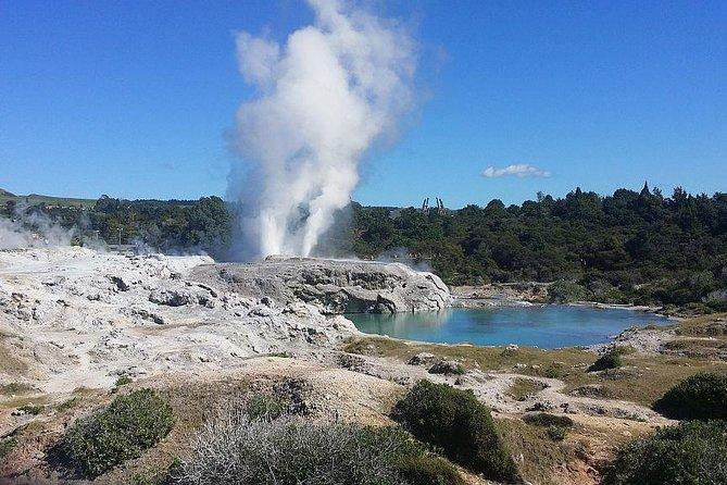 Tauranga Shore Excursion: Rotorua Geothermals at Whakarewarewa Maori Village