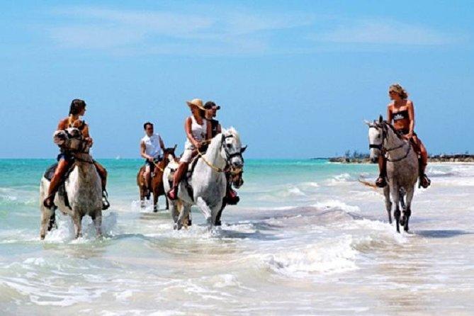 Horseback Riding on the Beach in Punta Cana (One Hour)