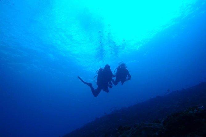 From Lembongan: Fun Dive Package to Nusa Lembongan and Nusa Penida