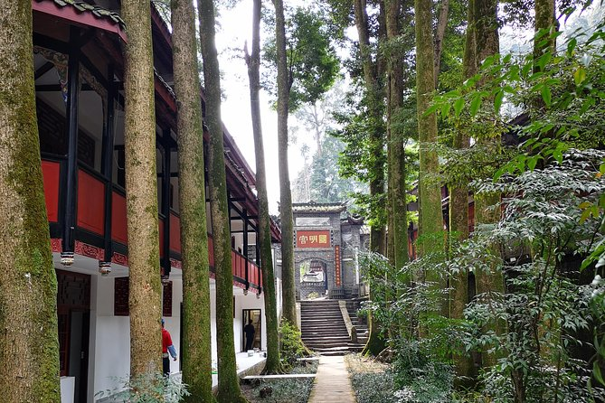 Off -the-Beaten-Track Tea Hill Walking Tour & Taoist-Temple Visit photo 7