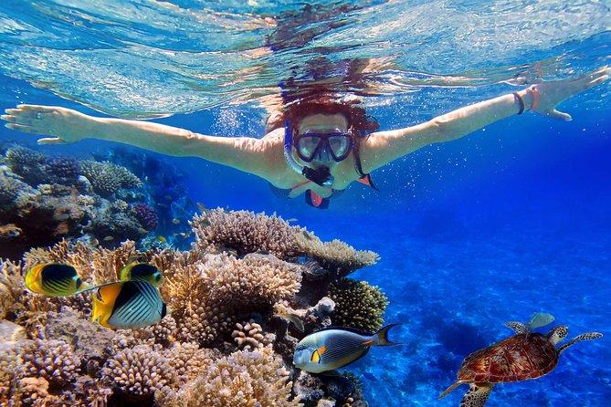 Snorkeling Bali At Tanjung Benoa Beach