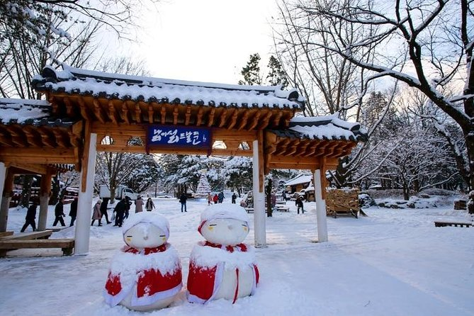 Day Trip to Nami Island and Gangchon Elysian Ski Resort from Seoul photo 1