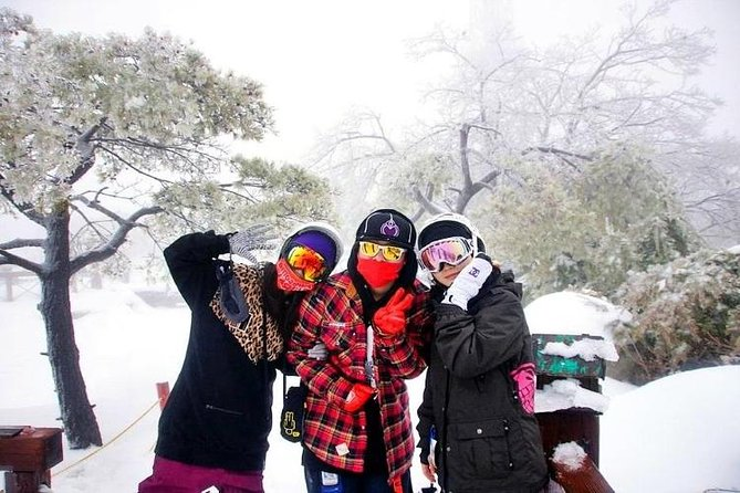 Snow or Ski Day Trip from Seoul