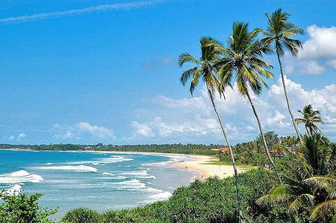 Colombo International Airport to Anywhere in Bentota-Transport only
