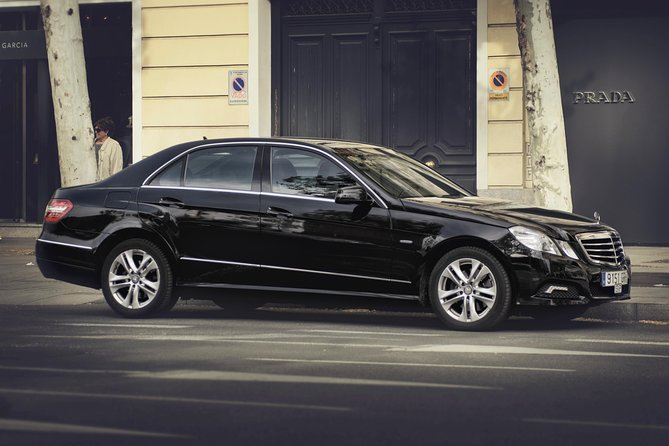 Arrival Private Transfer Berlin Schönefeld Airport to Berlin by Business Car