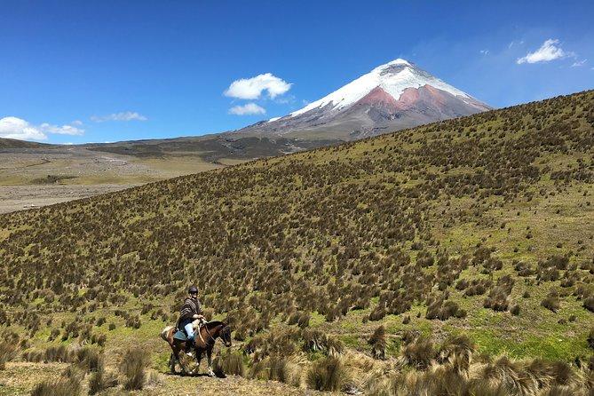 コトパクシ火山での乗馬