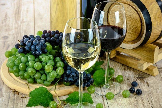 Évora - Inside the Olive Oil, Wine, and Cork Triangle