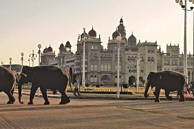 Heritage Tour of Mysore,Srirangapatana & Somanathpur with Breakfast & Lunch