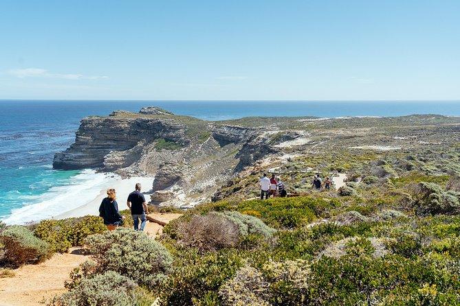 Scenic Cape Peninsula Private Day Tour