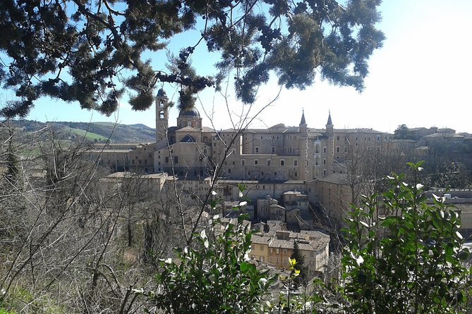 Visit of the Doge's Palace and the city of Urbino