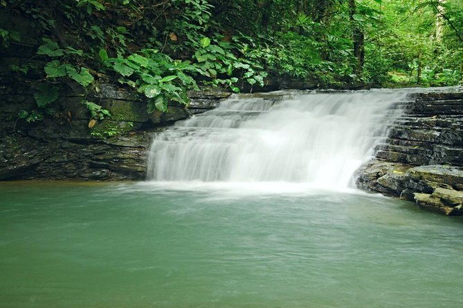Combo 4X4 Safari Car + Rainforest & Waterfalls Tour