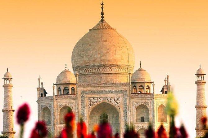Royal Taj mahal tour