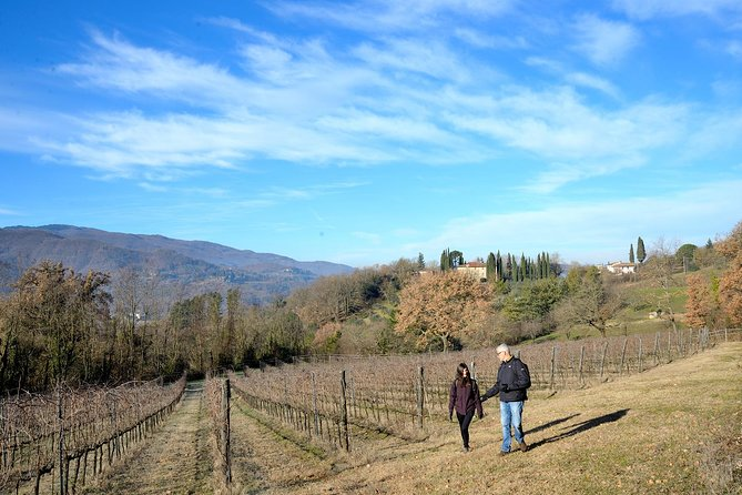 Hike & Chianti Wine Tour