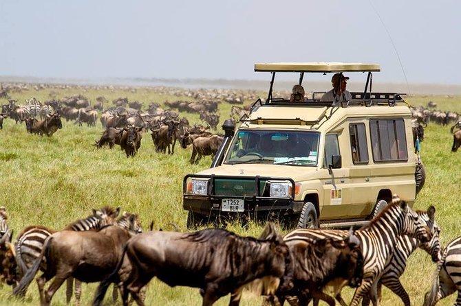 13 Days Discover Kenya and Tanzania Economic Safari