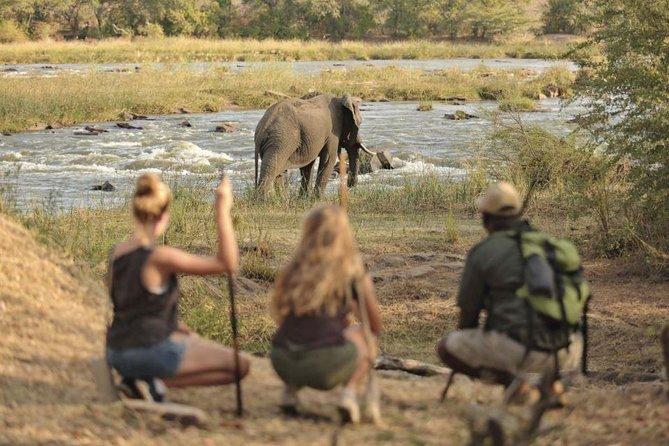 7 days Great Walking Safari Ngorongoro Highlands